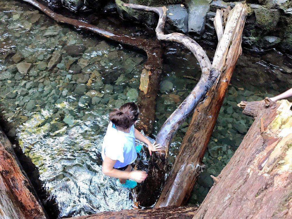 Climbing-Logs-Oneonta-Gorge